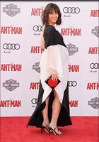 Celebrity Photo: Evangeline Lilly 2095x3000   523 kb Viewed 30 times @BestEyeCandy.com Added 64 days ago