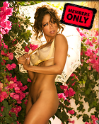 Celebrity Photo: Stacey Dash 1281x1600   952 kb Viewed 101 times @BestEyeCandy.com Added 1228 days ago