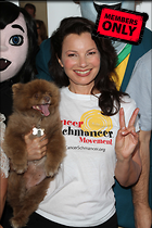 Celebrity Photo: Fran Drescher 3456x5184   1.3 mb Viewed 5 times @BestEyeCandy.com Added 1369 days ago