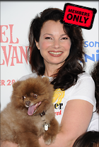 Celebrity Photo: Fran Drescher 2604x3844   1.5 mb Viewed 7 times @BestEyeCandy.com Added 1369 days ago