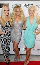 Celebrity Photo: Holly Madison 500x800   94 kb Viewed 150 times @BestEyeCandy.com Added 1576 days ago