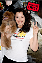 Celebrity Photo: Fran Drescher 2832x4256   2.4 mb Viewed 8 times @BestEyeCandy.com Added 1369 days ago