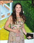 Celebrity Photo: Brooke Shields 2100x2700   1.1 mb Viewed 35 times @BestEyeCandy.com Added 114 days ago