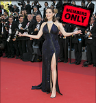 Celebrity Photo: Marion Cotillard 2377x2540   3.5 mb Viewed 1 time @BestEyeCandy.com Added 17 days ago