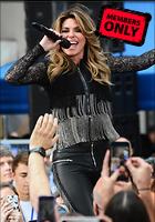Celebrity Photo: Shania Twain 3648x5214   1.6 mb Viewed 0 times @BestEyeCandy.com Added 27 days ago