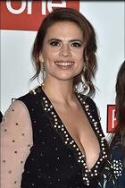 Celebrity Photo: Hayley Atwell 1200x1800   269 kb Viewed 27 times @BestEyeCandy.com Added 94 days ago