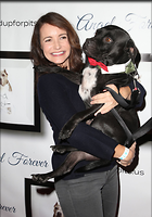 Celebrity Photo: Kristin Davis 1200x1718   276 kb Viewed 25 times @BestEyeCandy.com Added 36 days ago