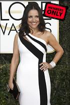 Celebrity Photo: Julia Louis Dreyfus 2600x3898   3.4 mb Viewed 0 times @BestEyeCandy.com Added 12 days ago
