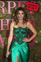 Celebrity Photo: Cindy Crawford 3149x4724   2.3 mb Viewed 1 time @BestEyeCandy.com Added 14 days ago