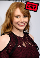 Celebrity Photo: Bryce Dallas Howard 2808x4100   5.2 mb Viewed 1 time @BestEyeCandy.com Added 20 days ago