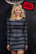Celebrity Photo: Pamela Anderson 2000x3000   2.7 mb Viewed 4 times @BestEyeCandy.com Added 27 days ago