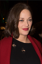 Celebrity Photo: Marion Cotillard 1463x2194   417 kb Viewed 3 times @BestEyeCandy.com Added 15 days ago