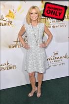 Celebrity Photo: Courtney Thorne Smith 2835x4252   1.9 mb Viewed 0 times @BestEyeCandy.com Added 65 days ago