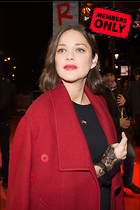Celebrity Photo: Marion Cotillard 2440x3660   1.3 mb Viewed 0 times @BestEyeCandy.com Added 15 days ago