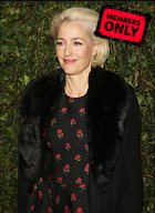 Celebrity Photo: Gillian Anderson 3732x5131   2.8 mb Viewed 3 times @BestEyeCandy.com Added 103 days ago
