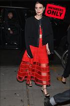 Celebrity Photo: Rooney Mara 4016x6016   2.6 mb Viewed 0 times @BestEyeCandy.com Added 27 days ago