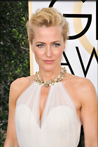 Celebrity Photo: Gillian Anderson 45 Photos Photoset #352930 @BestEyeCandy.com Added 526 days ago