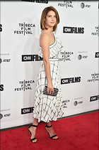 Celebrity Photo: Cobie Smulders 2126x3199   564 kb Viewed 32 times @BestEyeCandy.com Added 62 days ago