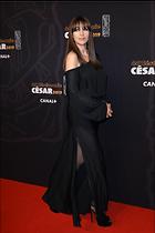 Celebrity Photo: Monica Bellucci 1600x2400   478 kb Viewed 46 times @BestEyeCandy.com Added 46 days ago