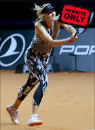 Celebrity Photo: Maria Sharapova 2035x2780   3.2 mb Viewed 3 times @BestEyeCandy.com Added 57 days ago