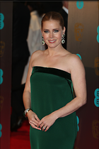 Celebrity Photo: Amy Adams 2400x3600   1,114 kb Viewed 6 times @BestEyeCandy.com Added 21 days ago
