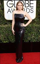 Celebrity Photo: Amy Adams 2400x3798   1.1 mb Viewed 11 times @BestEyeCandy.com Added 16 days ago