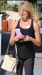 Celebrity Photo: Goldie Hawn 1200x2106   235 kb Viewed 50 times @BestEyeCandy.com Added 124 days ago