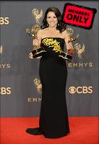 Celebrity Photo: Julia Louis Dreyfus 3000x4343   1.9 mb Viewed 1 time @BestEyeCandy.com Added 184 days ago