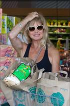 Celebrity Photo: Goldie Hawn 1200x1800   329 kb Viewed 73 times @BestEyeCandy.com Added 377 days ago