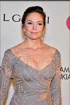 Celebrity Photo: Diane Lane 683x1024   226 kb Viewed 56 times @BestEyeCandy.com Added 79 days ago