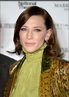 Celebrity Photo: Cate Blanchett 1600x2250   717 kb Viewed 14 times @BestEyeCandy.com Added 90 days ago