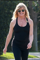 Celebrity Photo: Goldie Hawn 1200x1800   186 kb Viewed 71 times @BestEyeCandy.com Added 569 days ago