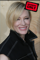 Celebrity Photo: Cate Blanchett 3456x5184   2.9 mb Viewed 0 times @BestEyeCandy.com Added 51 days ago