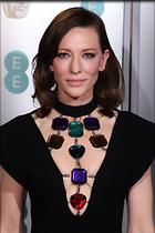 Celebrity Photo: Cate Blanchett 1200x1801   188 kb Viewed 117 times @BestEyeCandy.com Added 66 days ago