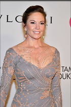 Celebrity Photo: Diane Lane 800x1199   135 kb Viewed 94 times @BestEyeCandy.com Added 103 days ago