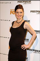 Celebrity Photo: Sarah Wayne Callies 2000x3008   409 kb Viewed 36 times @BestEyeCandy.com Added 210 days ago