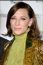 Celebrity Photo: Cate Blanchett 1600x2400   994 kb Viewed 30 times @BestEyeCandy.com Added 90 days ago
