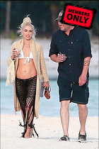 Celebrity Photo: Gwen Stefani 2333x3500   1.7 mb Viewed 1 time @BestEyeCandy.com Added 67 days ago