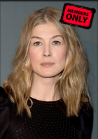 Celebrity Photo: Rosamund Pike 3368x4792   2.7 mb Viewed 2 times @BestEyeCandy.com Added 49 days ago