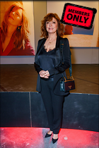 Celebrity Photo: Susan Sarandon 3309x4961   2.4 mb Viewed 0 times @BestEyeCandy.com Added 7 days ago