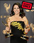 Celebrity Photo: Julia Louis Dreyfus 3000x3776   1.7 mb Viewed 1 time @BestEyeCandy.com Added 184 days ago