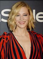 Celebrity Photo: Cate Blanchett 2100x2843   749 kb Viewed 26 times @BestEyeCandy.com Added 55 days ago