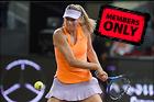 Celebrity Photo: Maria Sharapova 3000x2000   2.5 mb Viewed 3 times @BestEyeCandy.com Added 37 days ago