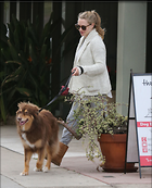 Celebrity Photo: Amanda Seyfried 2429x3000   502 kb Viewed 6 times @BestEyeCandy.com Added 14 days ago