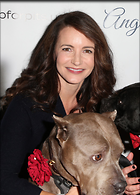 Celebrity Photo: Kristin Davis 1200x1674   269 kb Viewed 32 times @BestEyeCandy.com Added 127 days ago