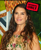 Celebrity Photo: Brooke Shields 2711x3300   1.3 mb Viewed 0 times @BestEyeCandy.com Added 114 days ago