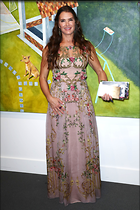 Celebrity Photo: Brooke Shields 2100x3150   757 kb Viewed 11 times @BestEyeCandy.com Added 51 days ago