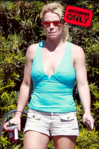 Celebrity Photo: Britney Spears 2400x3600   2.0 mb Viewed 1 time @BestEyeCandy.com Added 11 days ago