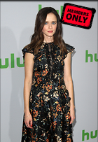 Celebrity Photo: Alexis Bledel 2482x3600   1.6 mb Viewed 2 times @BestEyeCandy.com Added 65 days ago
