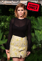 Celebrity Photo: Kate Mara 3542x5132   2.9 mb Viewed 1 time @BestEyeCandy.com Added 8 days ago